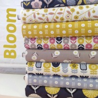 Dashwood Studio - Bloom