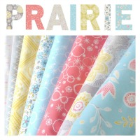 Dashwood Studio - Prairie