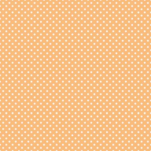 Riley Blake Designs - A Beautiful Thing - Dot in Orange *** REMNANT 3 METRE PIECE ***