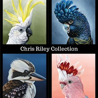 Chris Riley Collection