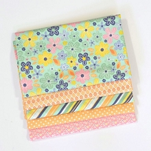 Riley Blake Designs - A Beautiful Thing - Fat Quarter Bundle of 5 Pieces in Pink/Orange Shades