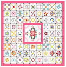 Sue Daley Designs Infusion Quilt Sew Along BLOCK OF THE MONTH