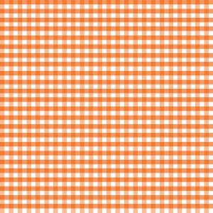 Riley Blake Designs - 1/4 Inch Medium Gingham in Orange