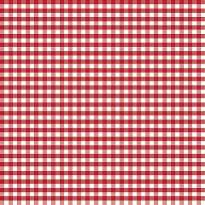 Riley Blake Designs - 1/4 Inch Medium Gingham in Red