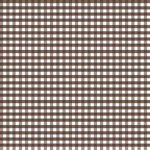 Riley Blake Designs - 1/4 Inch Medium Gingham in Brown