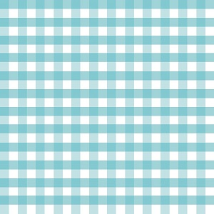 Riley Blake Designs - 1/2 Inch Large Gingham in Aqua