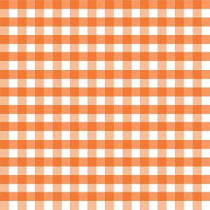 Riley Blake Designs - 1/2 Inch Large Gingham in Orange