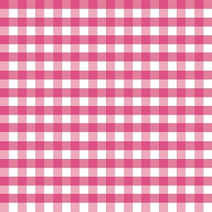 Riley Blake Designs - 1/2 Inch Large Gingham in Hot Pink