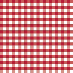 Riley Blake Designs - 1/2 Inch Large Gingham in Red