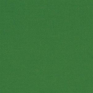 Devonstone Collection - Crocodile Green Solid