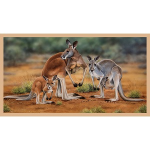 The Devonstone Collection Wildlife Art Panel - Kangaroo