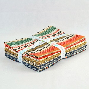 Riley Blake Designs - High Adventure - Half Metre Bundle of 12 Pieces