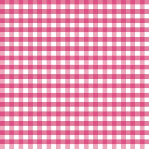 Riley Blake Designs - 1/4 Inch Medium Gingham in Hot Pink