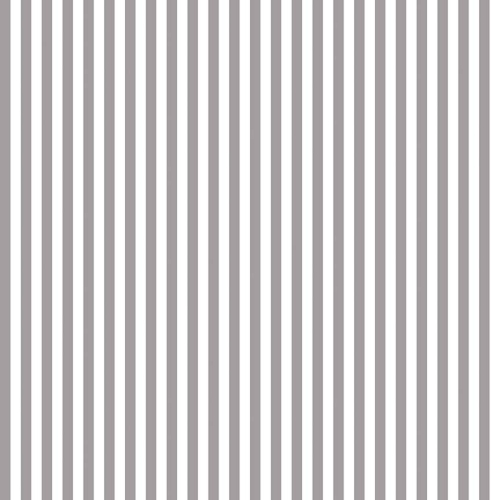 Riley Blake Deisgns 1/4 Inch Stripe in Grey