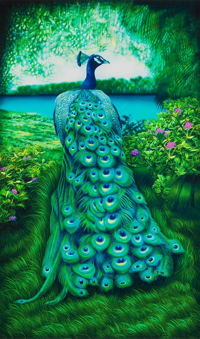 Robert Kaufman Peacock Elegance Peacock Panel