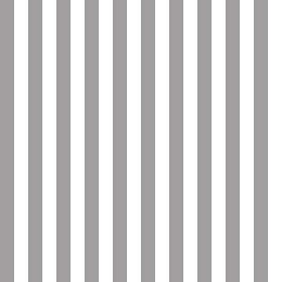 Riley Blake Designs - Cotton Stripes - Half Inch - Grey